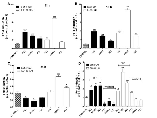Effects of the MDM2 inhibitors on the reactivation of p53 pathway.