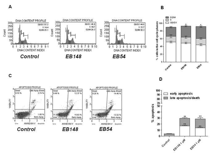 Effects of the MDM2 inhibitor on U87MG apoptosis and cell cycle.