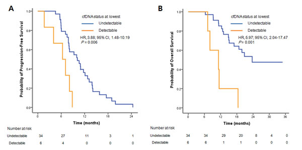 Survival curves for the 40 patients treated with EGFR TKIs.