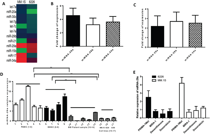 Differential expression of miRNAs between MM cells treated with PRIMA-1Met or DMSO control.