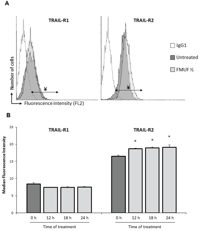 FMUF treatment increases cell surface expression of death receptor TRAIL-R2.
