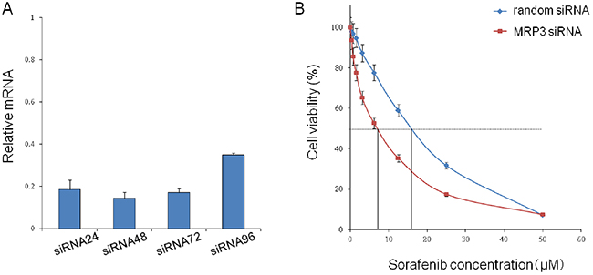 Knockdown of the MRP3 gene in PLC/PRF5-R2 cells and resulting change in sensitivity to sorafenib.