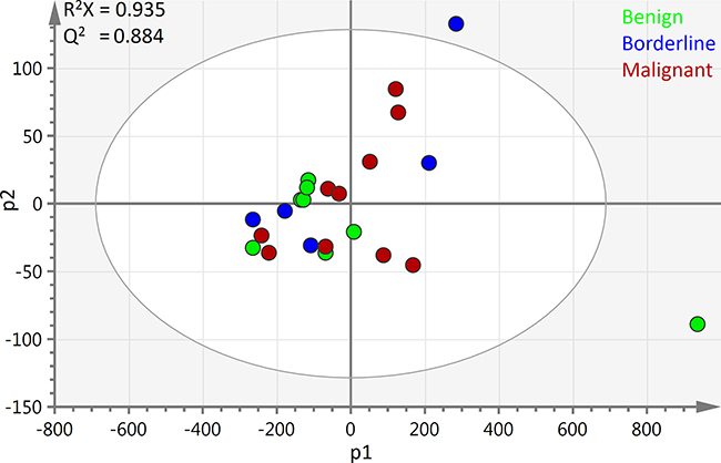 PCA scores plot of all ovarian cyst fluid 1H-NMR spectra: The first two principal components of the scores plot of all 23 samples are depicted above.