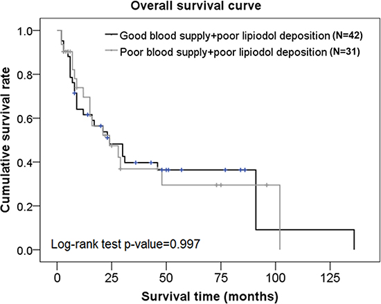 Overall survival curves in subjects from the poor lipiodol deposition group who had different blood supplies.