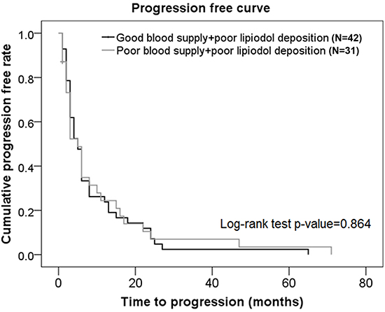 Progression-free curves in subjects from the poor lipiodol deposition group who had different blood supplies.