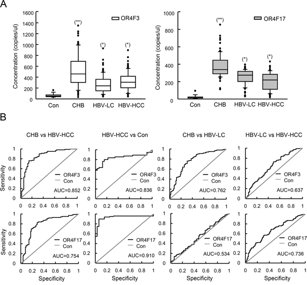 OR4F3 and OR4F17 as biomarkers for HBV-related diseases.