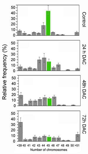 DAC induces aneuploidy in HCT-116 cells.