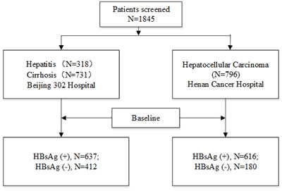 Patients' flowchart, data provided in absolute numbers.