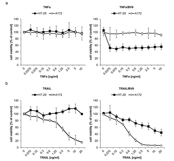 Differential sensitivity to TNFα and TRAIL is responsible for the differential requirement of TNFα and TRAIL for IFNα/BV6-induced cell death.