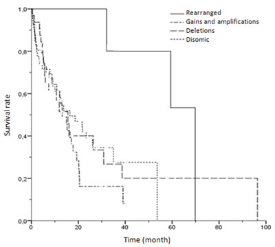 Kaplan-Meier univariate analysis of survival rates among patients with different