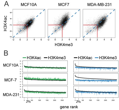 Correlation of H3K4me3 and H3K4ac enrichment at gene promoters among cancer-related cell lines.