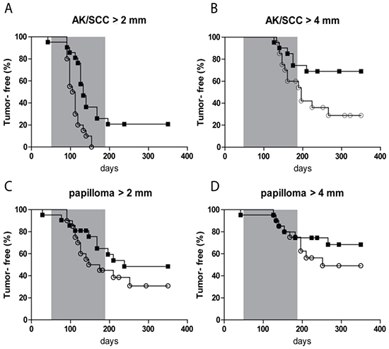 Kaplan-Meier plot of tumor-free fraction of mice for AK/SCC drops significantly faster after fractionated sub-sunburn UV exposure.