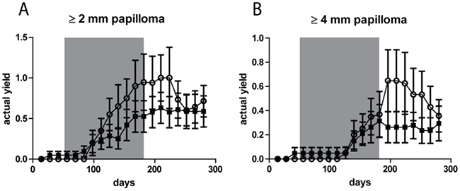 No significant difference in tumor yields (average number of tumors per mouse) for papillomas between the fractionated sub-sunburn and unfractionated sunburn UV dose groups.