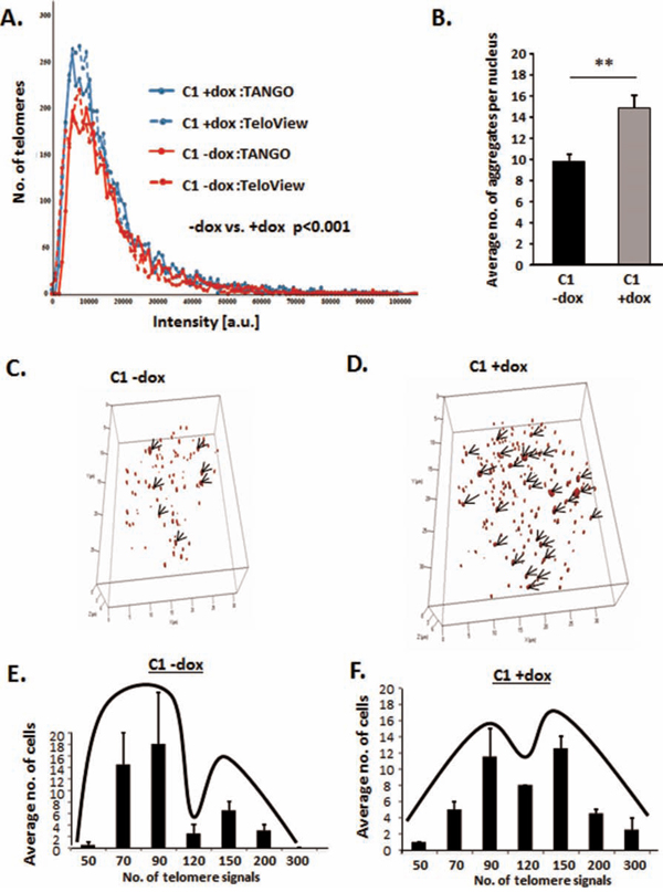 HMGA2 affects telomere architecture and defines telomere signatures in cancer cells.