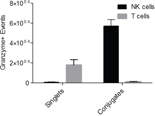 Granzyme assay showing actively cytotoxic NK cells perfused from tumors.