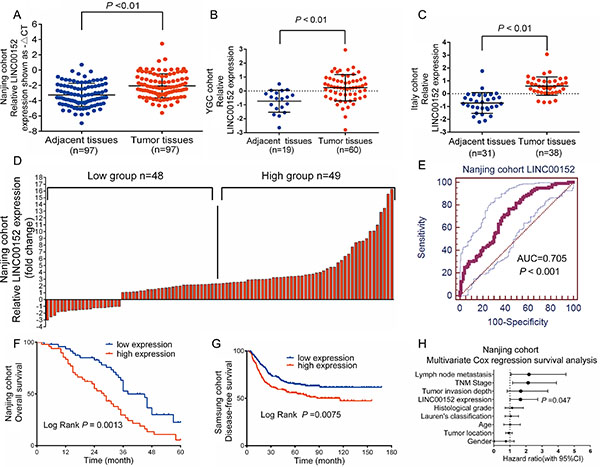 LINC00152 upregulation correlates with poor survival in patients with gastric cancer.
