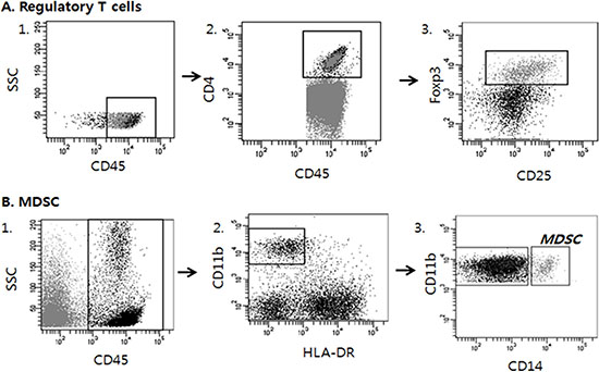 Analysis strategy to detect regulatory T cells (Tregs) and Myeloid derived suppressor cells (MDSCs) in tumor tissues by multicolor flow cytometry.