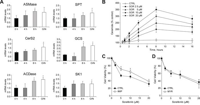 Sorafenib administration to hepatoma cells induces changes in ceramide metabolism.