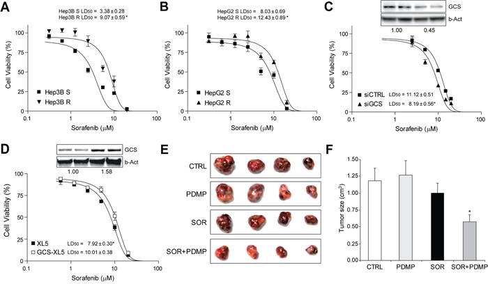 Sorafenib-resistant hepatoma cells were re-sensitized to sorafenib exposure by GCS targeting in vitro and in tumor mouse model.