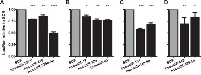 MicroRNAs identified as down-regulating TAL1 3'UTR reporter.