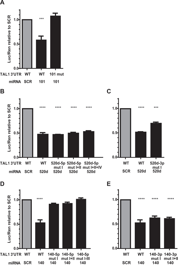 Effect of mutagenesis on microRNA-mediated repression of TAL1 3'UTR.