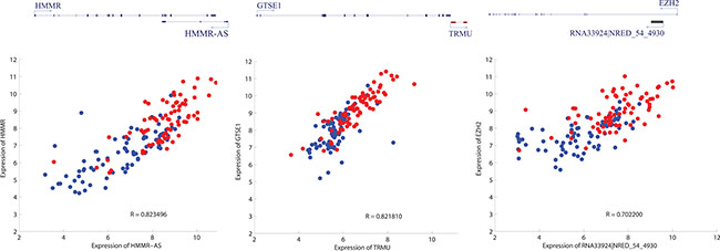 Three examples depicting potential cis regulation of common DE-lncRNAs on mRNAs.