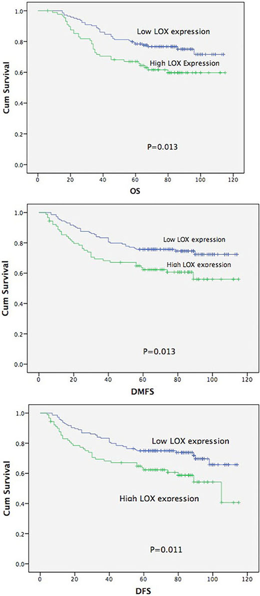 Overall survival curve, distant metastasis-free and disease-free survival curve according to LOX expression.