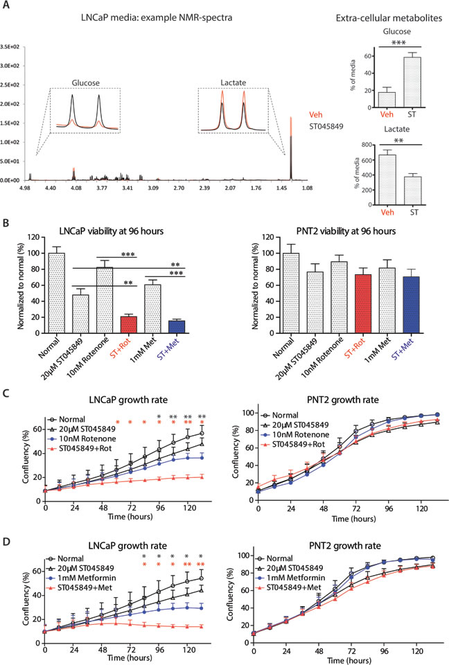 Metabolomic profiling of cell culture media after OGT inhibitor ST045849 treatment.