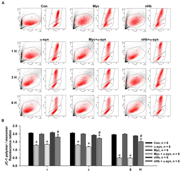 Effect of nHb on α-syn induced reduction of mitochondrial membrane potential.