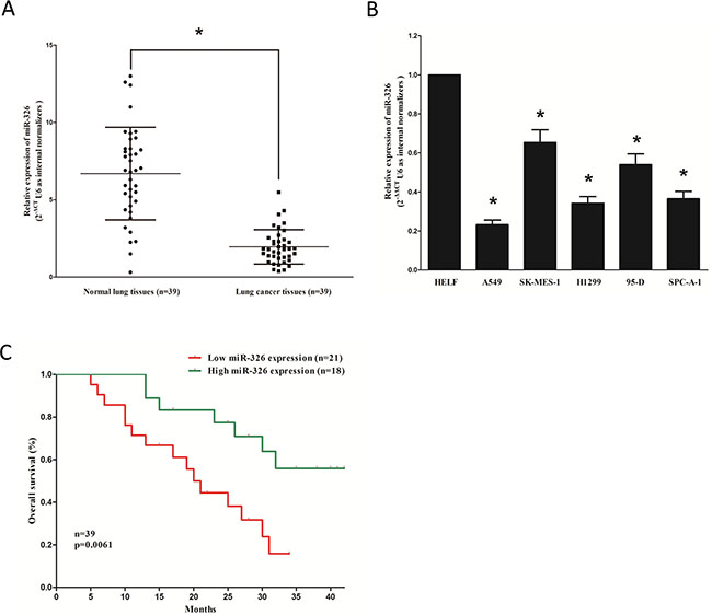 MiR-326 is down-regulated in primary human lung cancer and NSCLC cell lines, and benefits for prognosis.