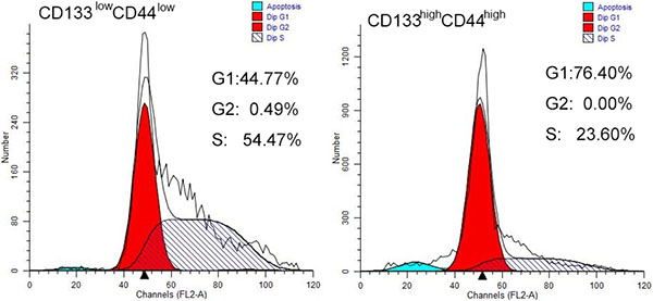 Cell cycle analysis of CD44high/CD133high and CD44low/CD133low cells in HCT-116 cell line.