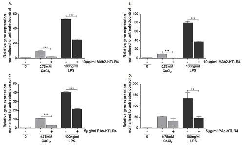 Effect of MAb2-hTLR4 and PAb-hTLR4 on cobalt-mediated