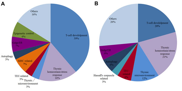 Pie chart of biological functions for high-hierarchy genes in DE networks.