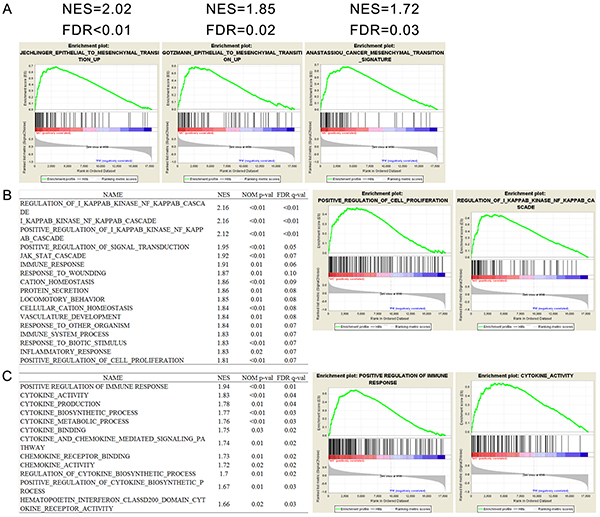 Functional annotation of pHH3 in TCGA GBM microarray data (N=603).