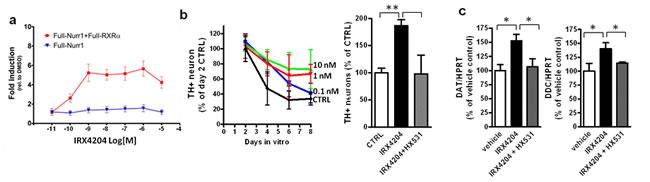 IRX4204 activates Nurr1 and improves DA neuron survival in primary VMB culture.