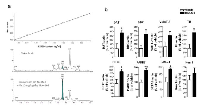 IRX4204 is bioactive in the brains following oral administration and activates Nurr1 downstream genes in the SN.