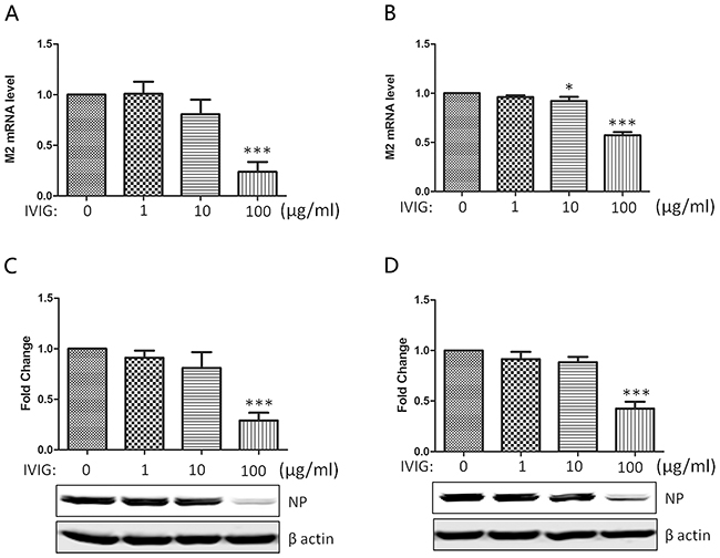 The neutralizing activity of IVIG against 2009 A (H1N1) influenza virus subtype.