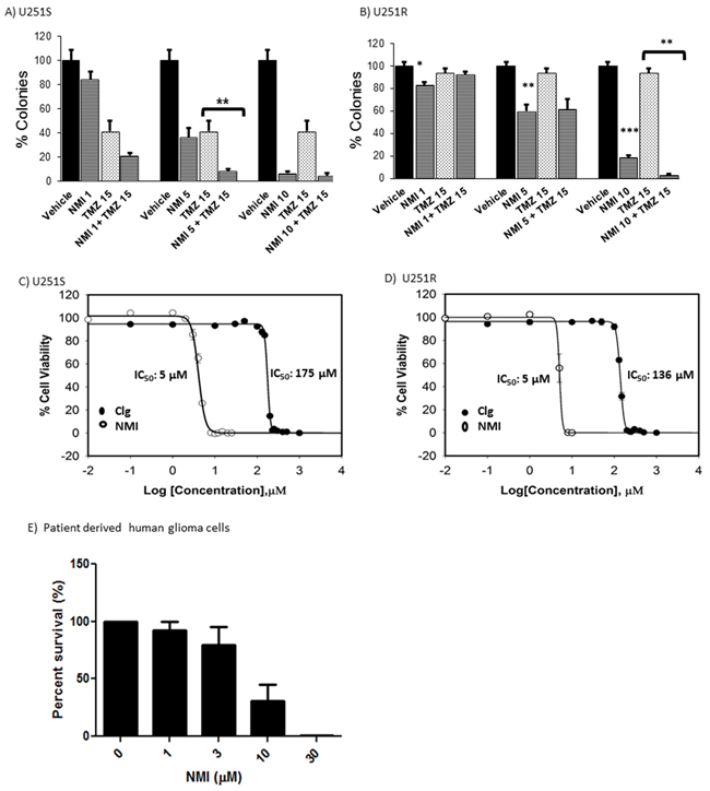 Cytotoxic effects of NMI on human glioma cells.