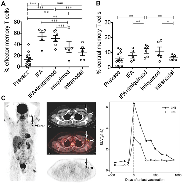 A VLP-peptide vaccine containing CpG delivered s.c. or i.d. with adjuvants, or intra-nodally without adjuvants modulates antigen-specific T cell immunity.