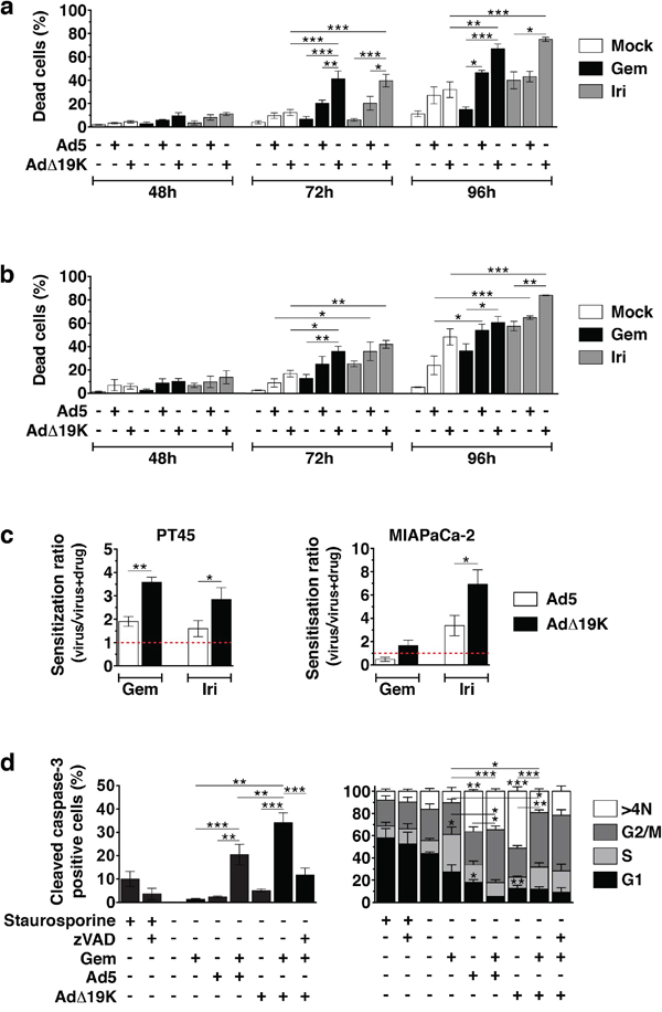 The adenoviral mutant AdΔ19K synergises more potently than Ad5 with gemcitabine and irinotecan by enhancing apoptotic death in pancreatic cancer cells.