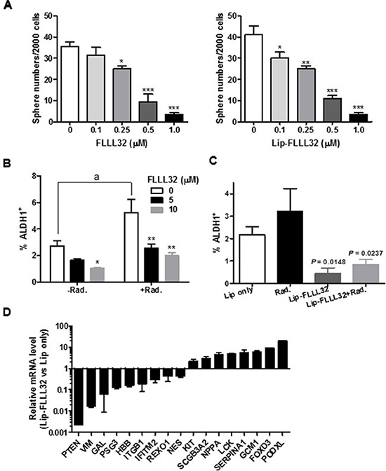 Lip-FLLL32 sensitizes pancreatic cancer to radiotherapy by reducing pancreatic CSCs.