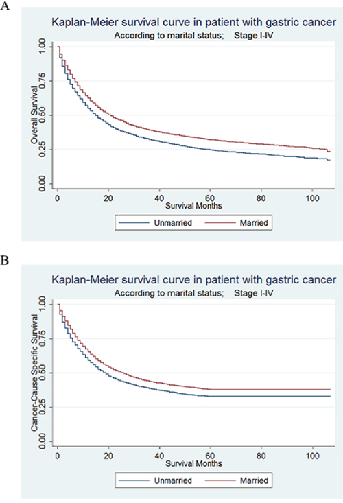 Kaplan-Meier Survival curves: The overall and cancer-caused specific survival of patients with gastric cancer according to marital status, unmarried versus married patients.