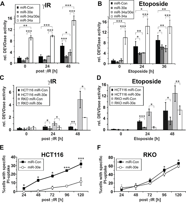 Effect of miR-30e on DNA damage-induced DEVDase activities and cell death.
