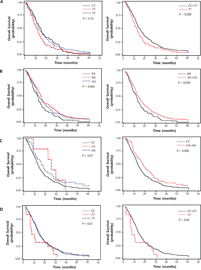 Kaplan-Meier plot of overall survival curves according to (A) ANAPC1 rs3814026C>T, (B) ETS2 rs461155A>G, (C) SORBS1 rs7081076C>A and (D) POLR2A rs2071504C>T genotypes.