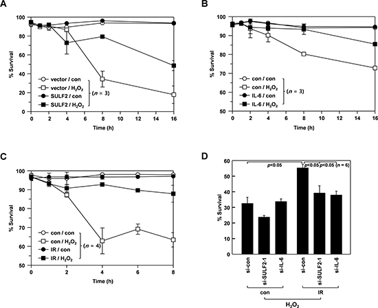 SULF2 and IL-6 mediate IR-induced resistance to death stimuli.