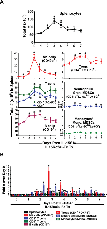 IL-15SA/IL-15RαSu-Fc significantly induces the expansion of splenic NK, T, B cell and granulocytic populations.