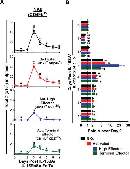 "IL-15SA/IL-15RαSu-Fc enhances the development of ""high effector"" NK cells."