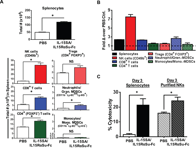 IL-15SA/IL-15RαSu-Fc significantly promotes the expansion of splenic lymphocyte and granulocyte populations in 4T1 tumor-bearing mice and increases ex vivo NK cytotoxicity against 4T1 tumor cells on total and per cell basis.