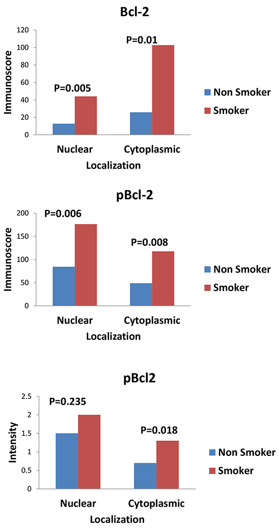 Graphs showing the comparison of expression of Bcl-2 and pBcl-2 between smokers and non smokers.