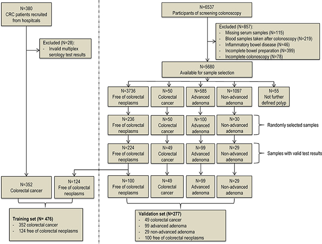 Flow diagram of sample selection procedure of the training set and the validation set.